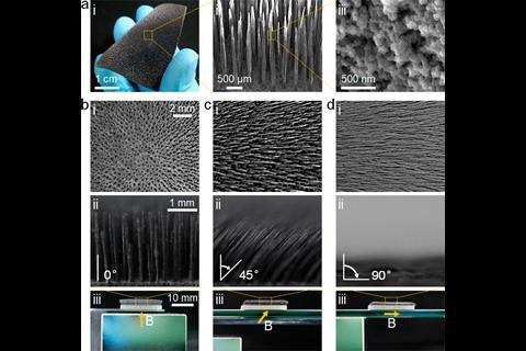 Structure and dynamic motion of the magnetically responsive hair array.